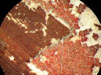 Freilegung einer feincraquelierten Rotlackfassung unter dem Mikroskop